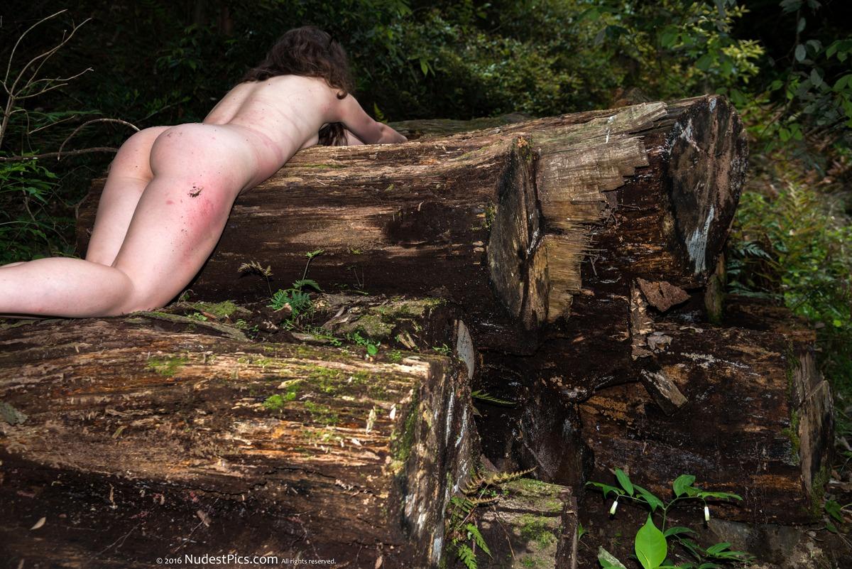 Nudist Woman Crawling on Wet Logs